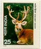 Deer - Symbol of 16th Jain Tirthanakar Shanthinath